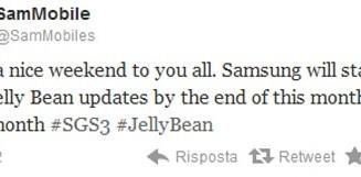 Android aggiornamento a Jelly Bean sugli smartphone Samsung